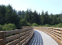 Banks-Vernonia State Trail beckons