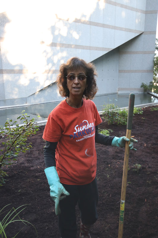 Rosario Collet, a member of Christ the King Parish in Milwaukie, is planting milkweed and other na-tives that help pollinators. She's doing so both as a volunteer at the Grotto and as a gardener at home. (Kristen Hannum/Catholic Sentinel)