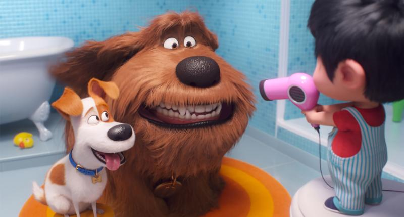 "Max, voiced by Patton Oswalt, Duke, voiced by Eric Stonestreet, and Liam, voiced by Henry Lynch, appear in the animated movie ""The Secret Life of Pets 2."" The Catholic News Service classification is A-II — adults and adolescents. The Motion Picture Association of America rating is PG — parental guidance suggested. Some material may not be suitable for children.(CNS photo/Universal)"