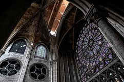 Architect calls for Notre-Dame's roof to be rebuilt of wood