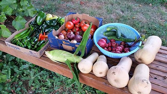 Courtesy St. Elizabeth Ann Seton Parish