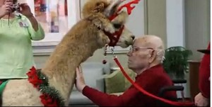 Sisters of St. Mary of Oregon